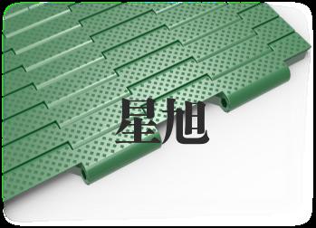 XSL-T-100-B网带链