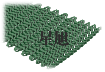 XSL-T-300网带链