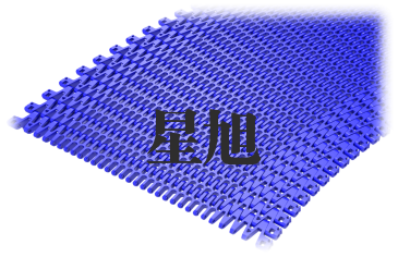 XSL-T-500网带链